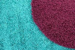 finsbury park carpet cleaning rental